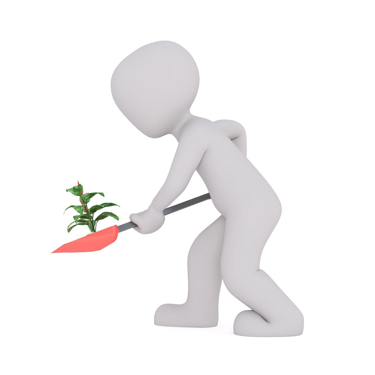 Planter son jardin intérieur